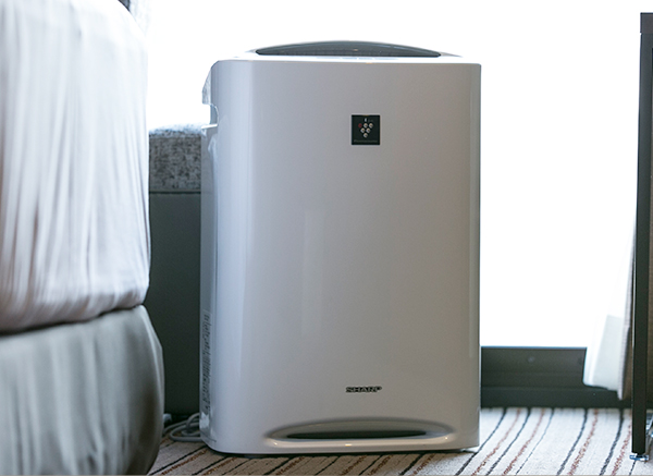 Humidifying Air Purifiers